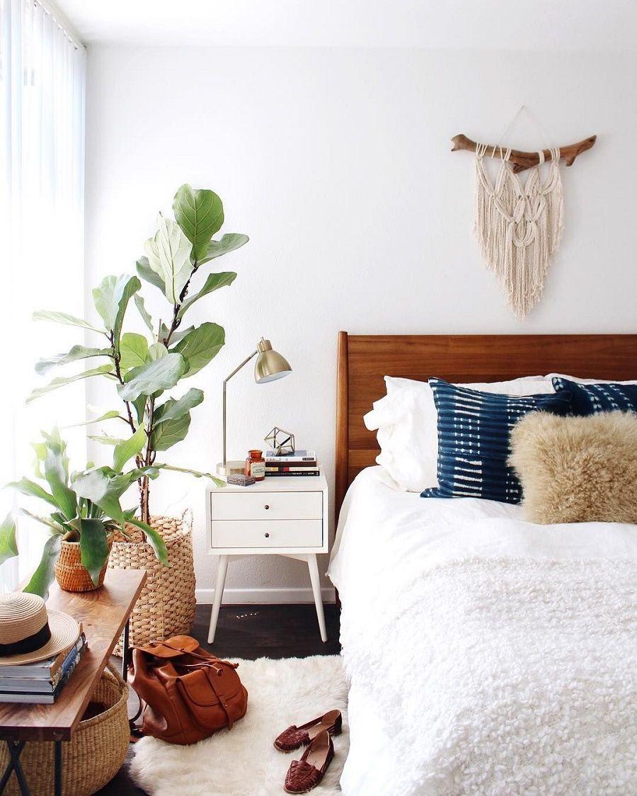 Giỏ cây được đặt cạnh cửa sổ phòng ngủ để bắt sáng